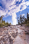 Steamboat Geyser in a rare eruption.  The eruption, at just past dawn, rose far above surrounding trees and significantly drained nearby Cistern Spring.  Lasting for around 30 minutes.  Yellowstone National Park, the first National Park in the world, still enthrals over three million visitors a year with it's geothermal features,wildlife,  rugged mountains, deep canyons and stunning ecosystem.