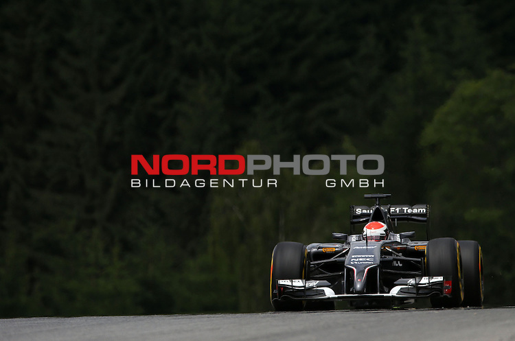 Adrian Sutil (GER), Sauber F1 Team<br /> for the complete Middle East, Austria &amp; Germany Media usage only!<br />  Foto &copy; nph / Mathis