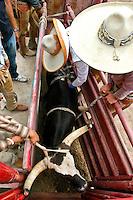 AJ ALEXANDER/AAP - Corona rodeo  09/01/07 Charro's prepairing a bull for the next contestant at the Corona Ranch in Laveen, AZ on Saturday Sept. 01, 2007  Photo by AJ Alexander/phx.jpg.