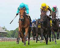 07-22-17 Diana Stakes (I) (Saratoga)