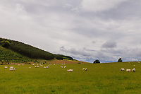 Scottland, landscape