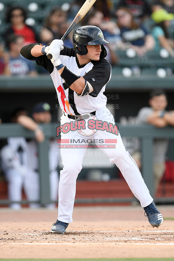 Catcher Hayden Senger (15) of the Columbia Fireflies bats in a game against the Lexington Legends on Thursday, June 13, 2019, at Segra Park in Columbia, South Carolina. Lexington won, 10-5. (Tom Priddy/Four Seam Images)