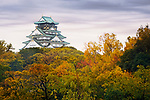 Osaka Castle, Osakajo on a hill surrounded by colorful yellow and red trees in a beautiful misty morning colorful autumn scenery. Osaka Castle Park in fall, Chūō-ku ward, Osaka city, Japan 2017