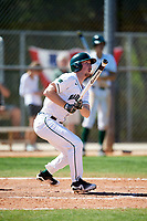 Dartmouth Big Green catcher Kyle Holbrook (9) at bat during a game against the Villanova Wildcats on March 3, 2018 at North Charlotte Regional Park in Port Charlotte, Florida.  Dartmouth defeated Villanova 12-7.  (Mike Janes/Four Seam Images)