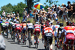 The peloton in action during Stage 15 of the 104th edition of the Tour de France 2017, running 189.5km from Laissac-Severac l'Eglise to Le Puy-en-Velay, France. 16th July 2017.<br /> Picture: ASO/Pauline Ballet   Cyclefile<br /> <br /> <br /> All photos usage must carry mandatory copyright credit (&copy; Cyclefile   ASO/Pauline Ballet)