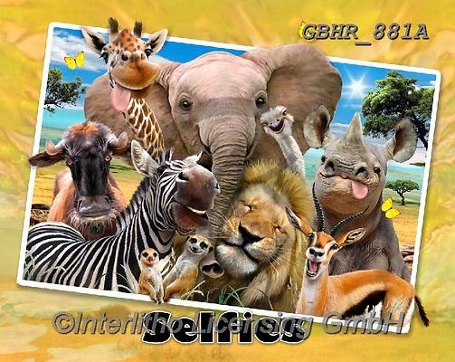 Howard, SELFIES, paintings+++++,GBHR881A,#Selfies#, EVERYDAY ,elephants