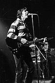 1977: JOHN CALE - Milan Italy