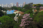 Primavera em Sao Paulo. Brasil, 2017. Foto de Juca Martins.