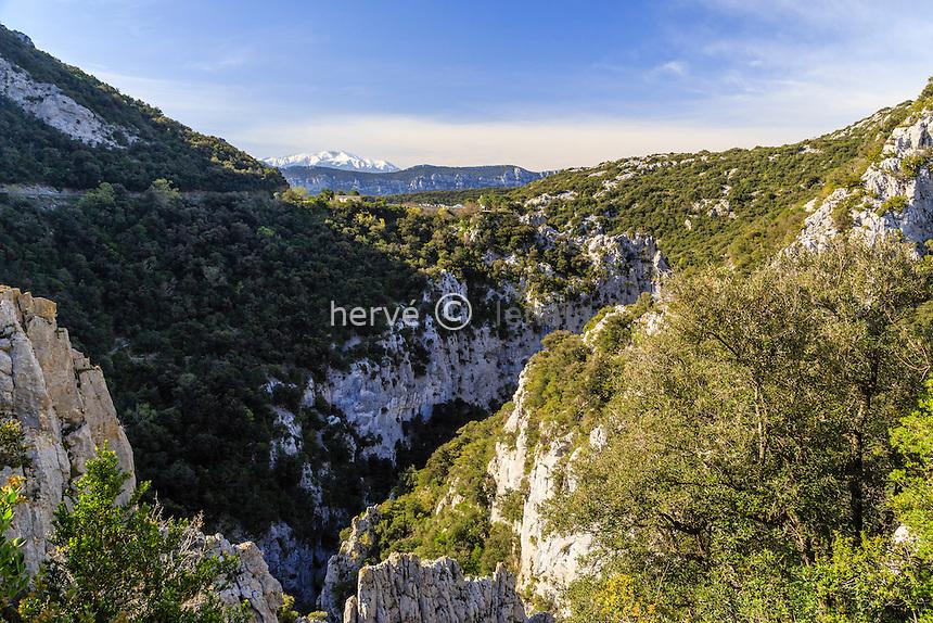 France, Pyrénées-Orientales (66), Saint-Paul-de-Fenouillet, Gorges de Galamus et le pic du Canigou au loin // France, Pyrenees Orientales, Saint Paul de Fenouillet, Galamus Gorges