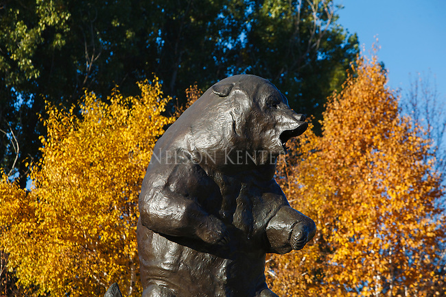 Grizzly statue outside the Boone and Crockett club headquarters building in Missoula, Montana