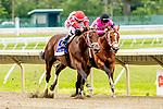 06-19-19 Pegasus Stakes Monmouth