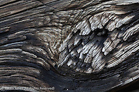 Close-up of log on log cabin, Mountain Farm Museum, Great Smoky Mountains National Park, North Carolina