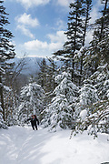 Hiker snowshoeing on the Hancock Loop Trail in the White Mountains, New Hampshire USA during the winter months.