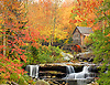 Autumn Colors -  Eastern USA