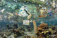 pollution, discarded plastic bags and other wastes, floating over coral reef in Raja Ampat, West Papua, Indonesia, Indo-Pacific Ocean