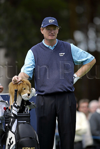 28 May 2005: South African golfer Ernie Els (RSA) waits to play his tee shot during the third round of the BMW Championship at Wentworth, Surrey. Photo: Neil Tingle/actionplus..050528 golf golfer man men player waiting portrait club head cover lion novelty