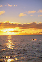Humpback whale sounds at sunset in Montague Strait, Prince William Sound, Alaska