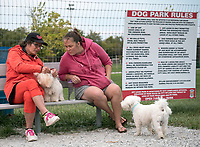 There's never a dull moment at the Sarnia Off Leash Dog Park.