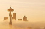 Seattle, Space Needle, fog, sunrise, Pacific Northwest, Washington State, USA,