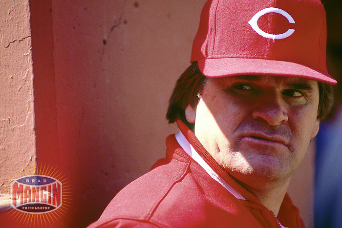 SAN FRANCISCO, CA - Manager Pete Rose of the Cincinnati Reds watches from the dugout during a game against the San Francisco Giants at Candlestick Park in San Francisco, California on June 18, 1987. Photo by Brad Mangin