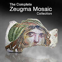 Pictures & Images of Zeugma Roman Mosaic Museum Art, Artefacts & Antiquities -