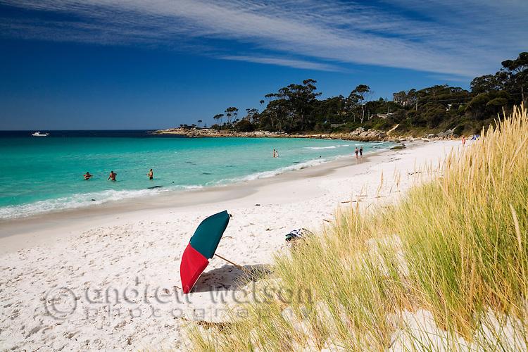 Beach umbrella at Binnalong Bay - a popular swimming beach in the Bay of Fires region.  St Helens, Tasmania, AUSTRALIA