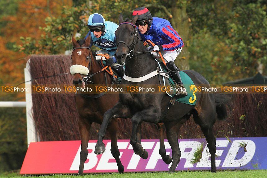 Race winner Wonderful Charm ridden by Daryl Jacob (L) and Bear's Affair  ridden by A P McCoy in jumping action during the Fakenham Novices Chase - National Hunt Horse Racing at Fakenham Racecourse, Norfolk - 25/10/13 - MANDATORY CREDIT: Gavin Ellis/TGSPHOTO - Self billing applies where appropriate - 0845 094 6026 - contact@tgsphoto.co.uk - NO UNPAID USE
