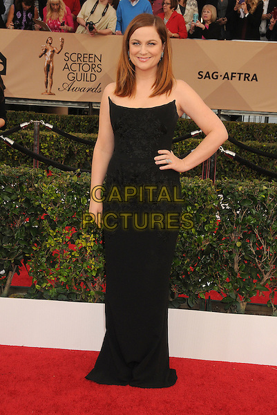 30 January 2016 - Los Angeles, California - Amy Poehler. 22nd Annual Screen Actors Guild Awards held at The Shrine Auditorium.      <br /> CAP/ADM/BP<br /> &copy;BP/ADM/Capital Pictures