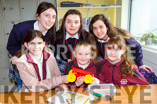 Castleisland Presentation students helping Scoil Muhuire gan Smal pupils how to build cars for engineering week in Castleisland Presentation on Friday Front row l-r: Lynsey Horan, Molly O'Regan, Adrianna Zebwska  Back row: Lauren Butler, Katie O'Connor, Ellen Dennehy.