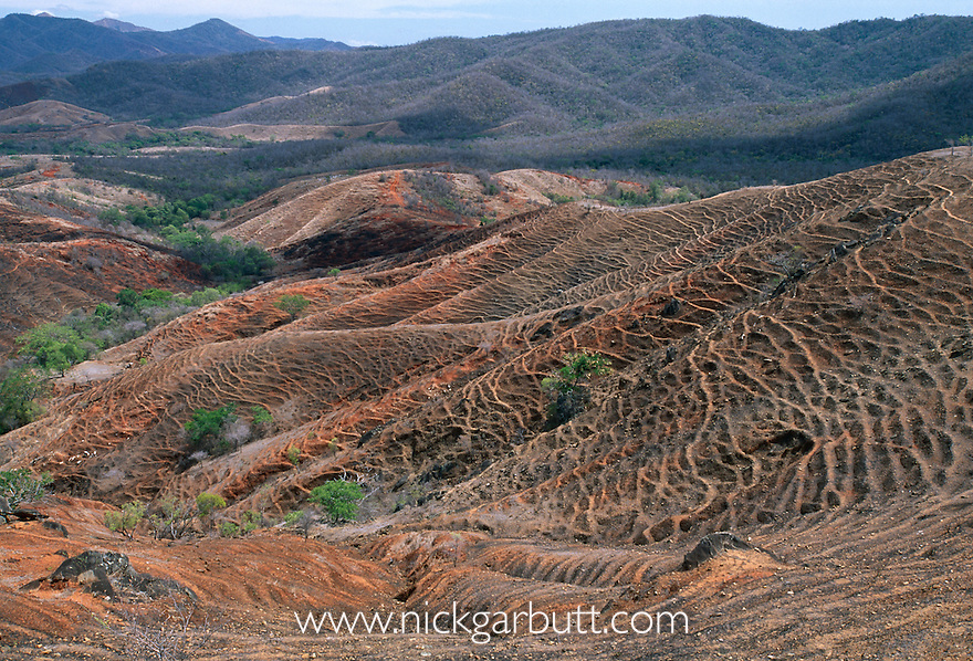 Deforestation and forest fragments near Andranotsimaty, Daraina, northern Madagascar.