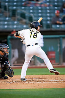 Jared Walsh (18) of the Salt Lake Bees bats against the Albuquerque Isotopes at Smith's Ballpark on April 24, 2019 in Salt Lake City, Utah. The Isotopes defeated the Bees 5-4. (Stephen Smith/Four Seam Images)