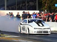 Feb 6, 2015; Pomona, CA, USA; NHRA pro stock driver Shane Gray during qualifying for the Winternationals at Auto Club Raceway at Pomona. Mandatory Credit: Mark J. Rebilas-