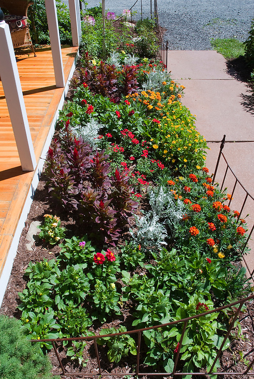 Sunny Annual Flower Garden Border In Front Of House Porch