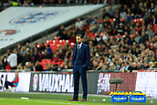 5th October 2017, Wembley Stadium, London, England; FIFA World Cup Qualification, England versus Slovenia; England Manager Gareth Southgate