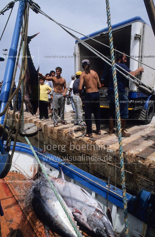ITALY, Sicily, Egedian island Favignana, La Mattanza, traditional fishing of bluefin Tuna fish, shipping to Japan