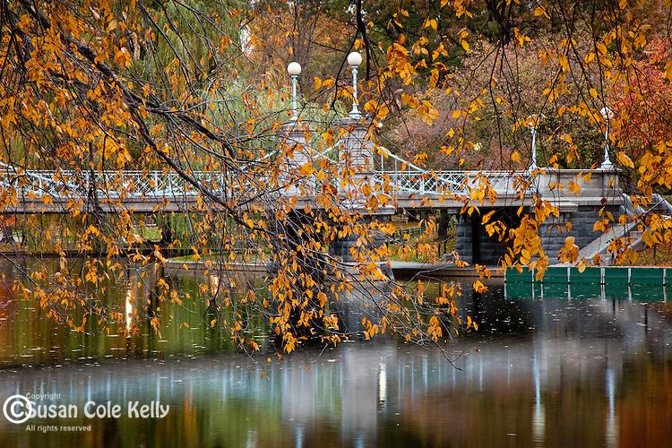 Autumn leaves at the Victorian Bridge in the Boston Public Garden, Boston, MA, USA