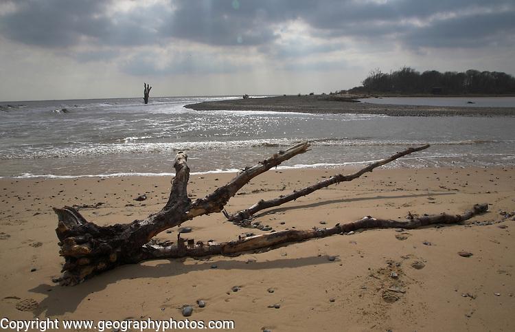 Benacre Broad, national nature reserve, Suffolk, England