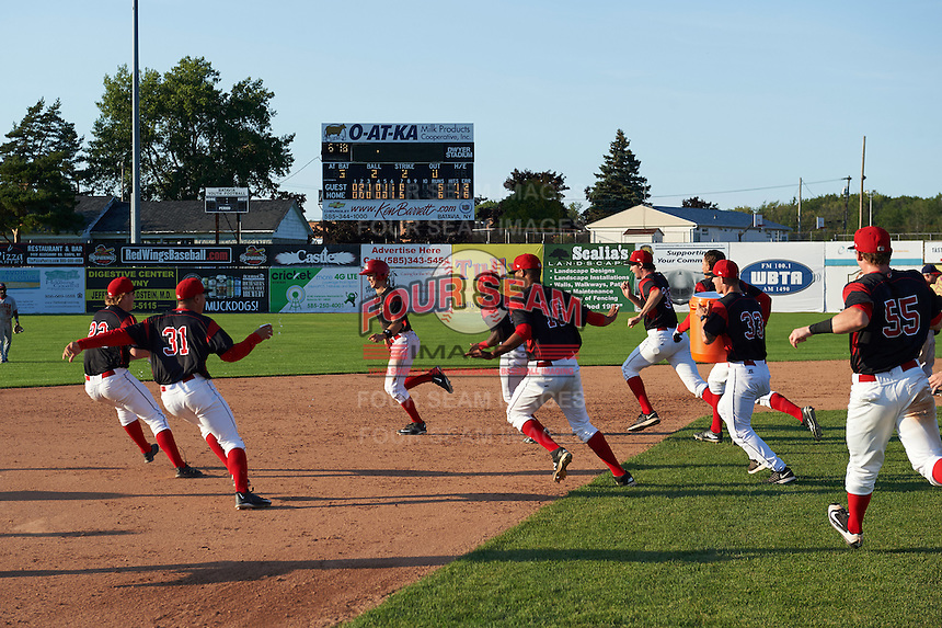 Batavia Muckdogs Walker Olis (3) is chased by teammates including RJ Peace (22), Ty Provencher (33), Isaiah White (18), Aneury Osorio (16), Chad Smith (34), Shane Sawczak (33), and Alex Jones (55) after a walk off hit during the second game of a doubleheader against the Auburn Doubledays on September 4, 2016 at Dwyer Stadium in Batavia, New York.  Batavia defeated Auburn 6-5. (Mike Janes/Four Seam Images)