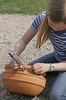 """Kinder bauen eine Sonnenuhr, auf einem Blumentopf wird ein """"N"""" für Norden gemalt"""