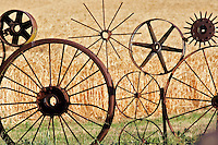 Assortment of old wheels in fence of farm with wheat field. Eastern Washington.