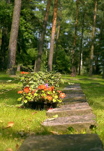 Friedhof Halbe<br /> Vom 24. April 1945 bis 1. Mai 1945 fand in der Gegend um den Brandenburgischen Ort Halbe eine der letzten grossen Schlachten der Wehrmacht gegen die Rote Armee statt. Unter dem Befehl des Wehrmachtsgeneral Theodor Busse (9. Armee) kamen mehr als 40.000 Wehrmachtssoldaten und unzaehlige Zivilisten ums Leben. General Busse lehnte ein Kapitulationsangebot der Roten Armee ab. In den Waeldern um Halbe starben innerhalb dieser einen Woche insgesammt ueber 60.000 Menschen.<br /> Auf dem Waldfriedhof Halbe in Brandenburg wurden ueber 23.000 Kriegsopfer beerdigt. Ebenfalls auf dem Waldfriedhof begraben sind unzaehlige ermordete russische Zwangsarbeiterinnen und Zwangsarbeiter, sowie ca. 4.500 Tote aus den NKWD Lager Ketschendorf.<br /> Rechtsextremisten und Neonazis planen zum Volkstrauertag im November 2002 auf der Gedenkstaette ein sogenanntes &quot;Heldengedenken&quot;.<br /> Hier: Graeber toter Wehrmachtssoldaten und Zivilisten.<br /> 25.8.2002, Berlin<br /> Copyright: Christian-Ditsch.de<br /> [Inhaltsveraendernde Manipulation des Fotos nur nach ausdruecklicher Genehmigung des Fotografen. Vereinbarungen ueber Abtretung von Persoenlichkeitsrechten/Model Release der abgebildeten Person/Personen liegen nicht vor. NO MODEL RELEASE! Nur fuer Redaktionelle Zwecke. Don't publish without copyright Christian-Ditsch.de, Veroeffentlichung nur mit Fotografennennung, sowie gegen Honorar, MwSt. und Beleg. Konto: I N G - D i B a, IBAN DE58500105175400192269, BIC INGDDEFFXXX, Kontakt: post@christian-ditsch.de<br /> Bei der Bearbeitung der Dateiinformationen darf die Urheberkennzeichnung in den EXIF- und  IPTC-Daten nicht entfernt werden, diese sind in digitalen Medien nach &sect;95c UrhG rechtlich geschuetzt. Der Urhebervermerk wird gemaess &sect;13 UrhG verlangt.]