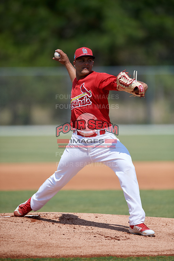 St. Louis Cardinals pitcher Junior Fernandez (13) during a Minor League Spring Training game against the Miami Marlins on March 26, 2018 at the Roger Dean Stadium Complex in Jupiter, Florida.  (Mike Janes/Four Seam Images)