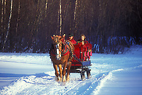sleigh ride, Vermont, Stowe, VT, One horse open sleigh ride at Charlie Horse Sleigh Rides in Stowe in winter.
