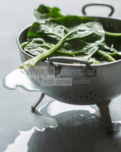 Epinards  bio // Organic Spinach