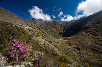 Merida_VEN, Venezuela...Regiao montanhosa em Merida, Venezuela...Mountainous region of Merida, Venezuela...Foto: JOAO MARCOS ROSA / NITRO