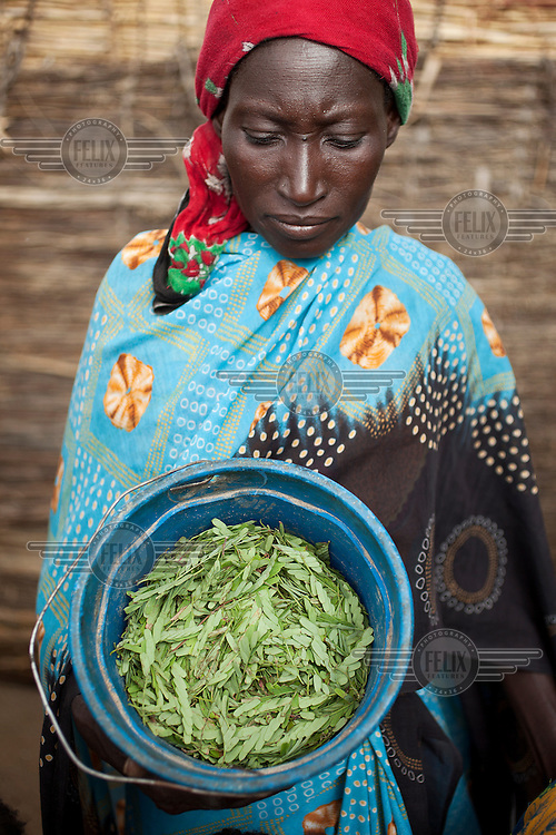 A woman displays a bucket of tree leaves with which she plans to feed her family. Across the Sahel drought, exacerbated by a rise in global food prices, has left about 40% of Niger's population facing severe food insecurity. This particularly affects women and children with an estimated 127,000 children under five years old predicted to suffer from severe malnutrition during 2012.