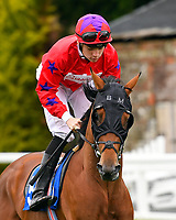 Dark Gory ridden by Callum Shepherd goes down to the start  of The Molson Coors Handicap  during Evening Racing at Salisbury Racecourse on 11th June 2019