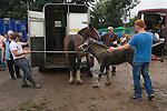 Brigg Horse Fair. Brigg, Lincolnshire England 2009.