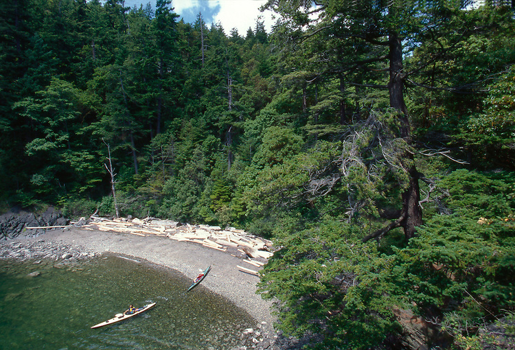 Sea Kayaker, Lummi Island, San Juan Islands, Georgia Strait, Washington State, Pacific Northwest, USA
