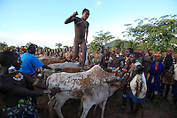 The young Aïke heads off running and jumps over the first animals. He has to make four roundtrips, but out of bravado, he doesn't finish his turns so that they are not counted and thus enhances his prestige. There are nearly twenty-five cows and bulls in the row. Aïke does not cease to jump from backbone to backbone. The tension amongst the crowd is palpable. ///Le jeune Aïké s'élance en courant et saute les premières bêtes. Il devra faire quatre aller-retour mais par bravade, il ne finit pas ses tours pour qu'ils ne soient pas comptés et accroître ainsi son prestige. La rangée de bêtes compte près de vingt-cinq vaches et taureaux. Aïké n'en finit pas de sauter d'échine en échine. La tension de la foule est palpable.